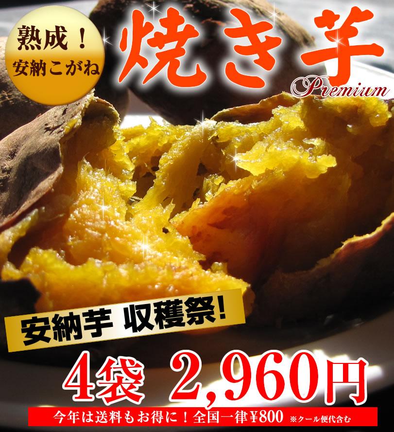 おいしい原種安納蜜芋