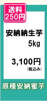 原種安納蜜芋の規格外・不揃いをお買い得価格でご提供いたします