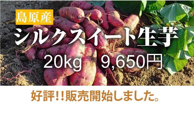 島原産生芋 シルクスイートさつま芋