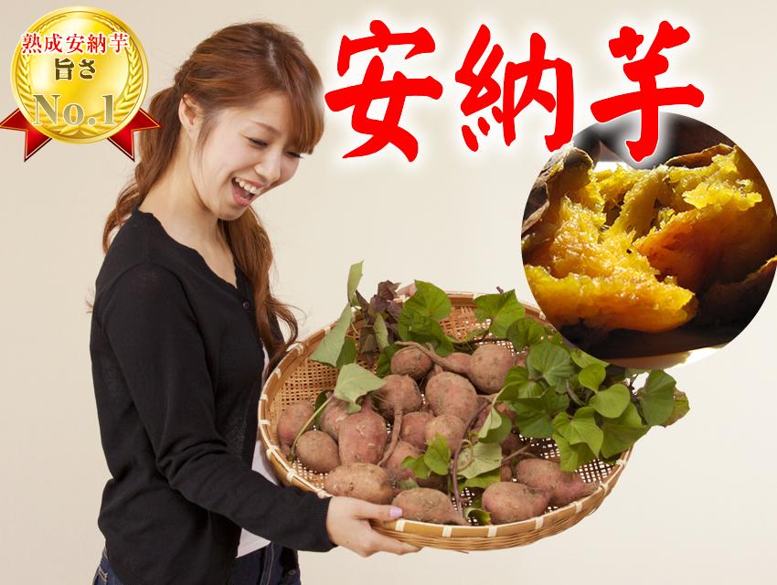 安納紅 安納芋 蜜芋 生芋