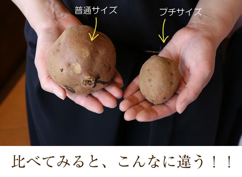 安納芋焼き芋小さいサイズ